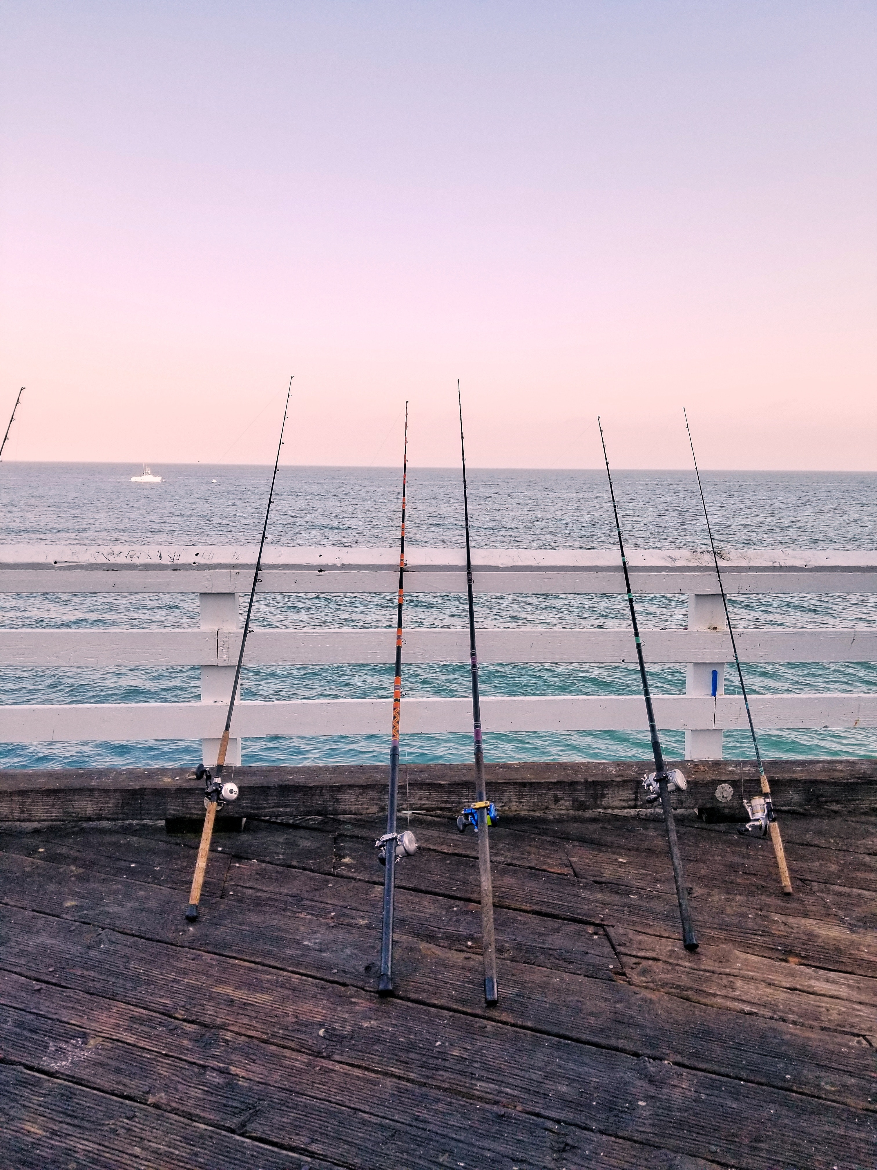 different fishing rods leaning on the railings of a jetty